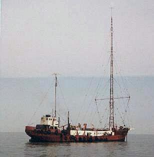 184023189_MVMiAmig0(bronwikipedia).jpg.d9f1cf4bfeaea0fa2c91a1b968ce1631.jpg