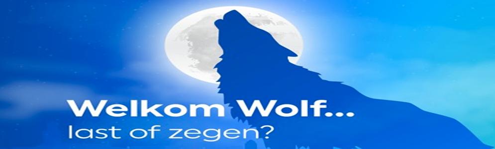 RTV Oost maakt podcast-serie over de terugkeer van de wolf