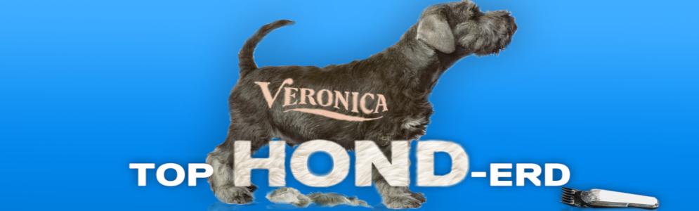 Radio Veronica viert dierendag met Top Hond-erd